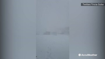 You can barely see anything in this near-whiteout