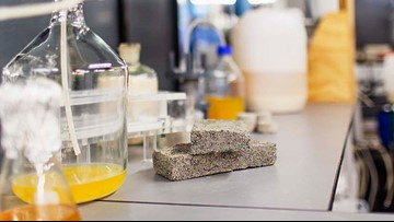 'Bio-Bricks' Made of Urine Could Be Building Blocks of the Future
