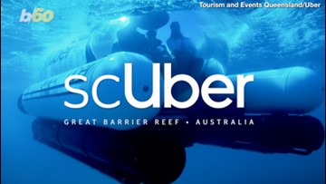 Uber? More like scUber! Win a Ride on the World's First Rideshare Submarine on the Great Barrier Reef