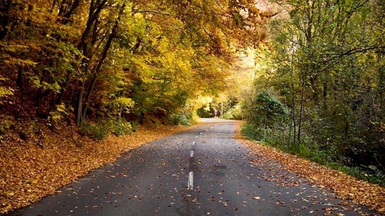 How to Time Your Fall Foliage Getaway Just Right and Where To Find the Best Views