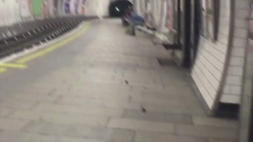 You Have to See These Mice Brawling on a Train Platform in London