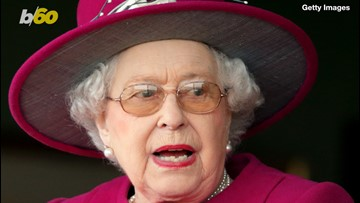 Queen Horrified With Rodents Spotted At Buckingham Palace