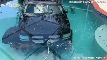 Carpool Chaos! Florida Driver Hits The Gas Instead Of Breaks, Ends Up In Pool!