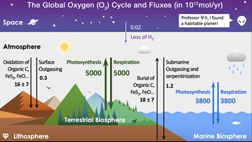 How Do You Spell Oxygen >> Verify Is The Amazon Forest Responsible For 20 Of The