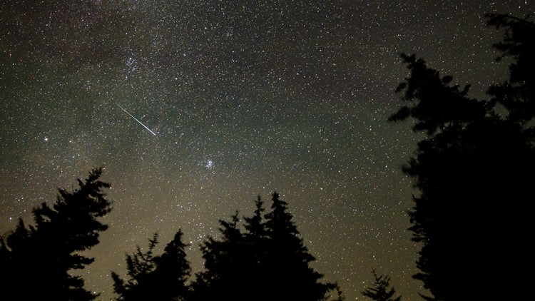 'Best meteor shower of the year' | When to see the Perseids peak