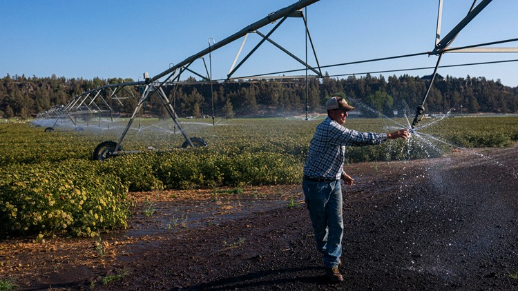 Drought haves, have-nots test how to share water in the West