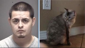 Police: 4-year-old firesAK-47 as dad fatally stabs cat