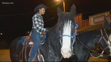 Everything from A to Z: Ponderosa Stables in South Phoenix