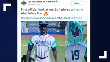 Liga menor afiliada a los Arizona Diamondbacks se cambia el nombre para la Copa de la Diversión