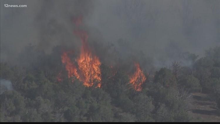 Wildfires in Arizona: June 22 evening update