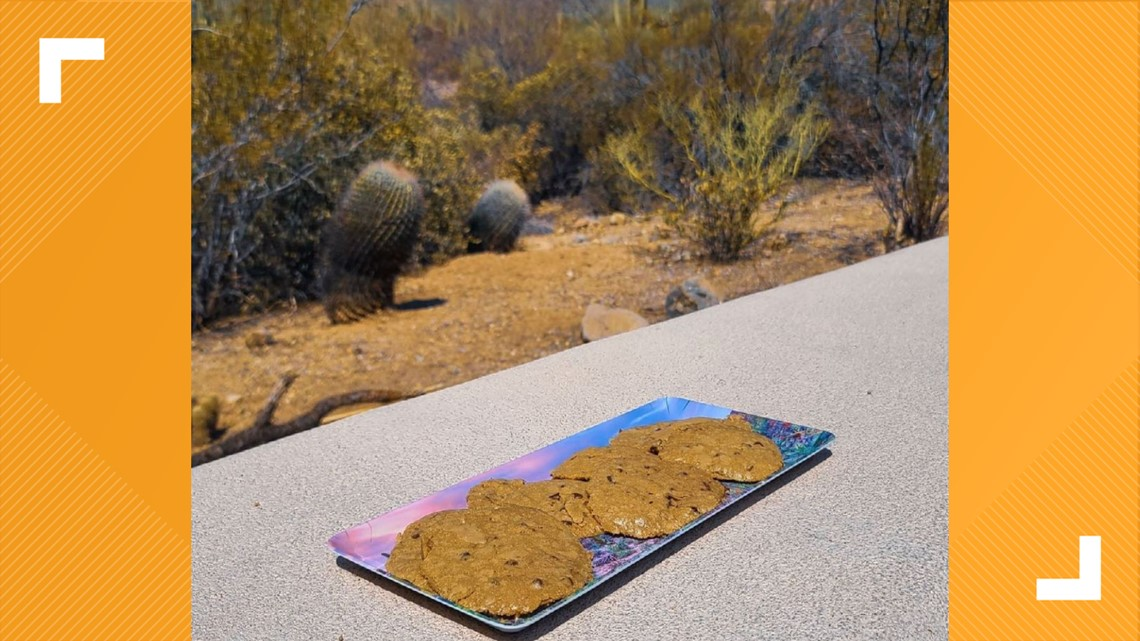 Saguaro National Park use baked cookies and cooked burgers to warn about extreme heat dangers