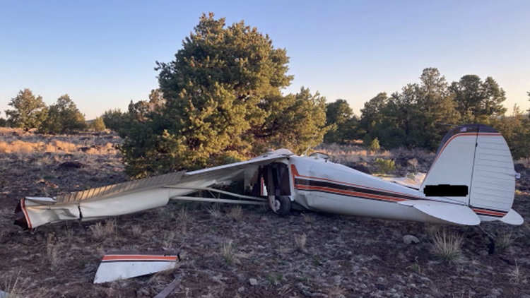 Two dead after plane crashes near Williams airport