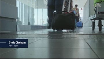 Experts predict banner year for travel industry