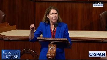"""Congresista demócrata, Ann Kirkpatrick de Arizona será tratada por alcoholismo después de una """"severa"""" caída"""
