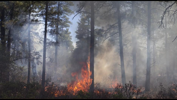 Firefighters on scene of 7-acre fire at Lynx Lake campground in Prescott
