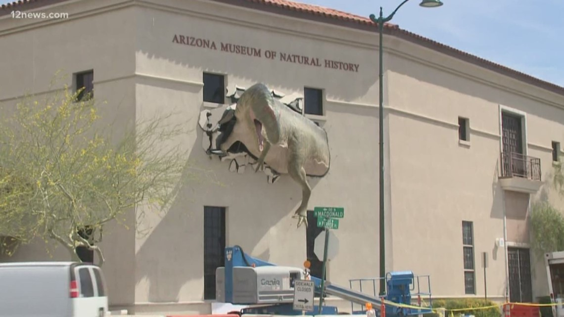 Arizona Museum Of Natural History Dino
