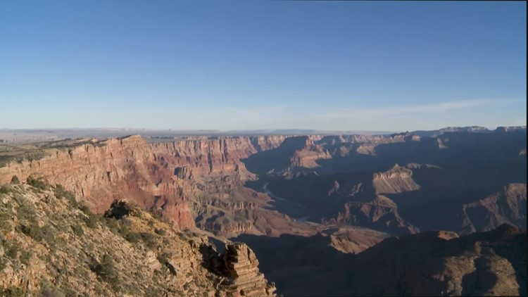 6 reasons why Grand Canyon officials are begging hikers not to bring their dogs