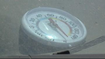 Altas Temperaturas: Pudiera ser mortal dejar animales y niños dentro del auto