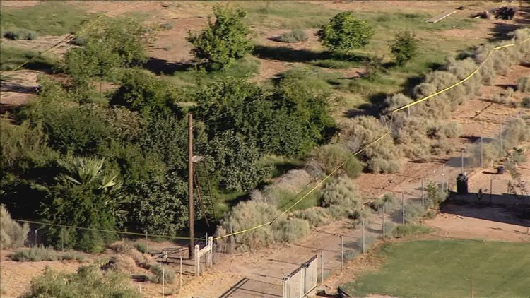 8-year-old injured on zip line near Buckeye has died, MCSO says