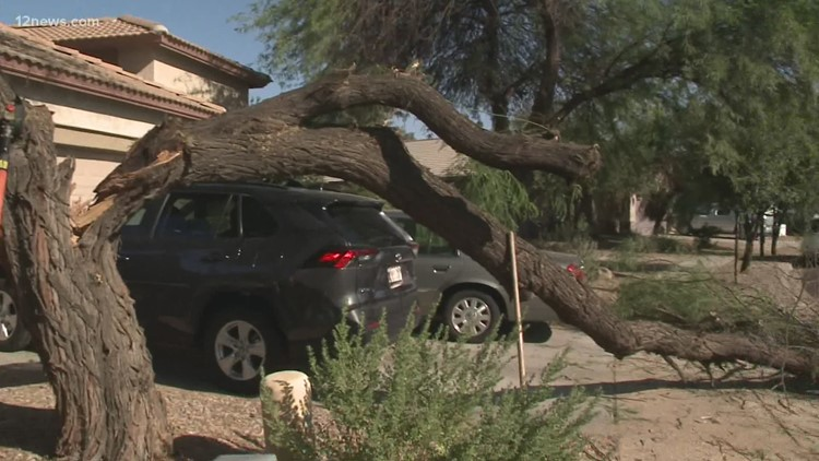 Queen Creek neighborhood cleaning up after Tuesday's monsoon storm