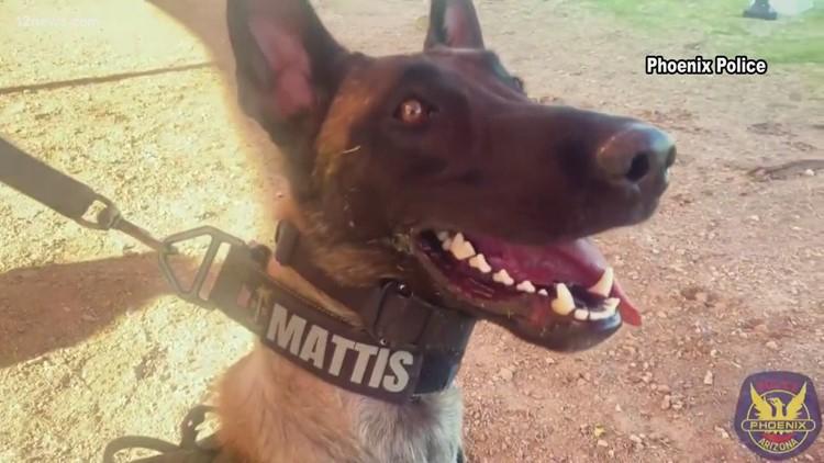 Police drug dogs finding new roles after Arizona legalizes marijuana