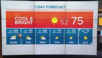 Morning weather update January 19
