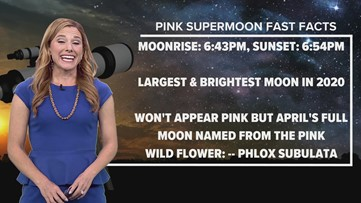 Here's what the skies will look like for tonight's Pink Supermoon
