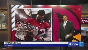 Former Cardinal Bertrand Berry opens defensive lineman training facility