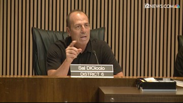 'You're anarchists': Councilman Sal DiCiccio shouts at members of the public at city council meeting