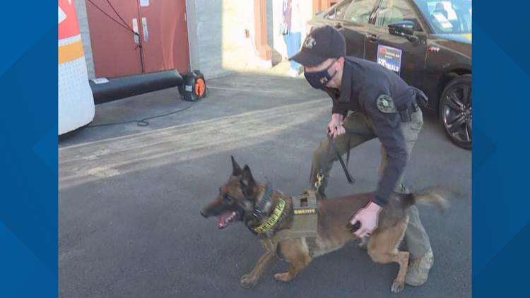 Dog teams compete in Desert Dog Police K9 trials in Scottsdale