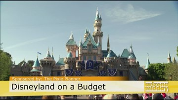 Score a great deal to Disney with the Pixie Planner