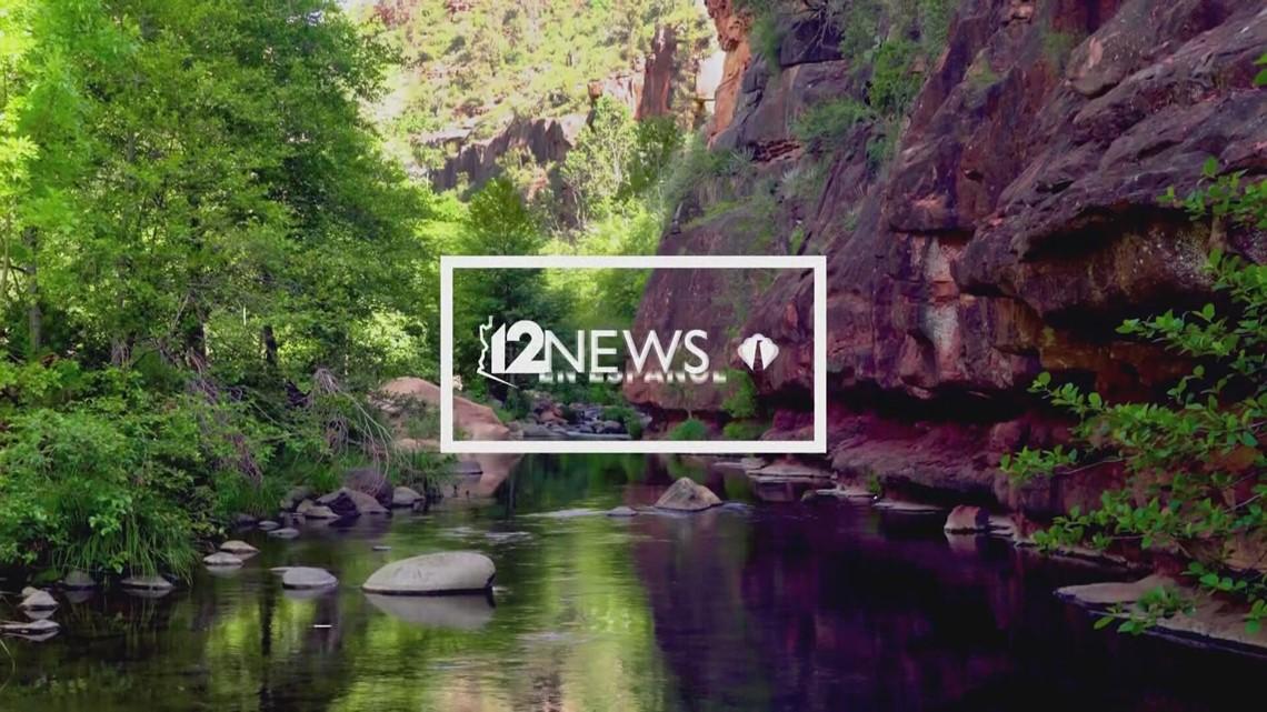 Cápsula informativa: Una recopilación de las noticias de la semana del 12 de julio