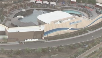 Dolphinaris removes signage, dolphins remain in the facility