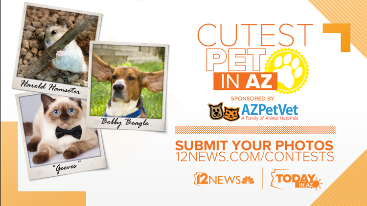 CONTEST ENDED: CUTEST PET IN AZ