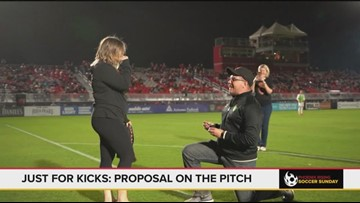 Proposal on the Phoenix Rising pitch