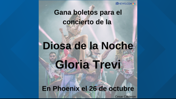 12 NEWS EN ESPANOL GLORIA TREVI SWEEPSTAKES