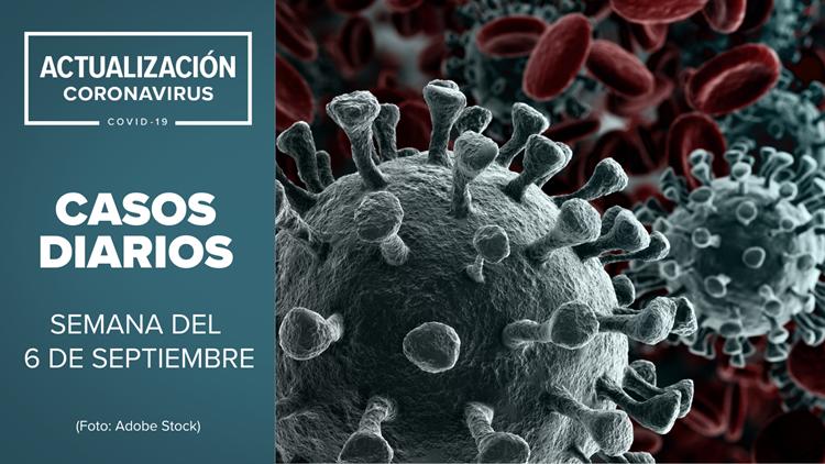 Coronavirus en Arizona: Actualización de casos de COVID-19 para la semana del 6 de septiembre