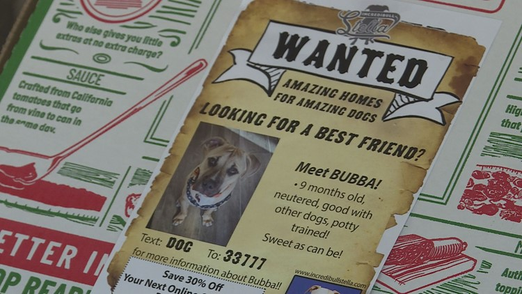 Shelter dogs getting more attention on pizza boxes in the Valley