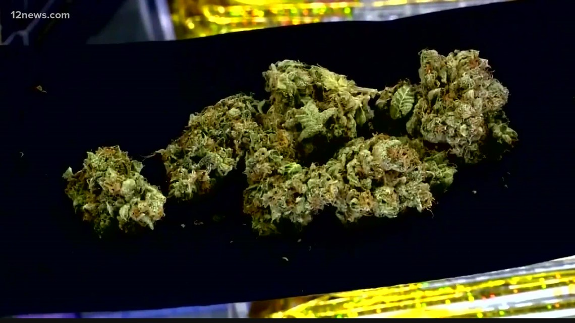 Multiple cannabis festivals coming soon to Arizona