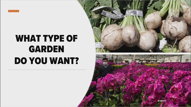 3 things you need to know about starting garden in hot climate