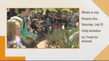 Celebrate 'Winter in July' at the Phoenix Zoo