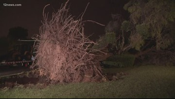 Monsoon storm leaves Mesa neighborhood damaged
