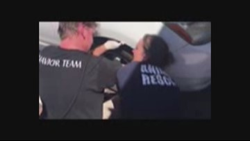Caught on camera: Cat rescued from car engine