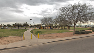 Officers use stun gun on man accused of attempting to charge admission at a Phoenix park