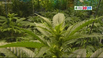 How would legalizing marijuana impact real estate prices in Arizona?