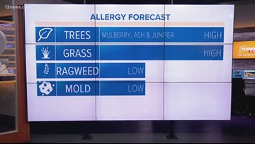 Allergy forecast: Mulberry, ash, juniper trees blooming in