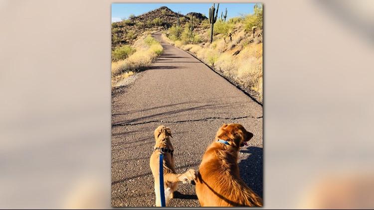Todd out for a hike. (Photo: Paula Godwin)