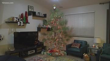 Joe Dana and his family go on an old fashioned Christmas tree adventure