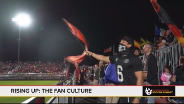 Rising Up: The fan culture of Phoenix Rising