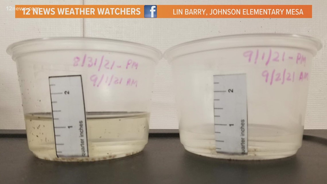 Krystle features homemade rain gauges created by Johnson Elementary students